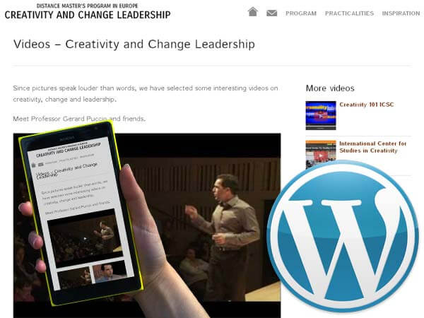 responsive wordpress website masterchangeskills
